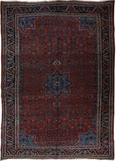 Antique Persia Bidjar 9 x 13 in Red/Blue